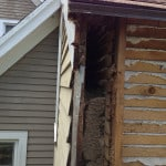 Insulation repair - Rockport Maine